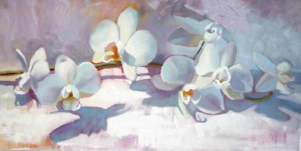 Orchids by Diana Davydova