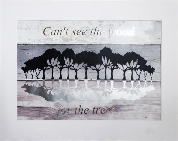 Can't see the wood for the trees by Sue Rowe