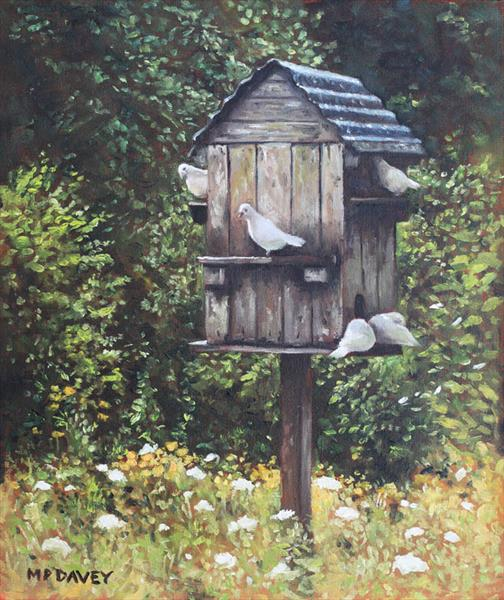 White Doves using a Dovecote  by Martin  Davey