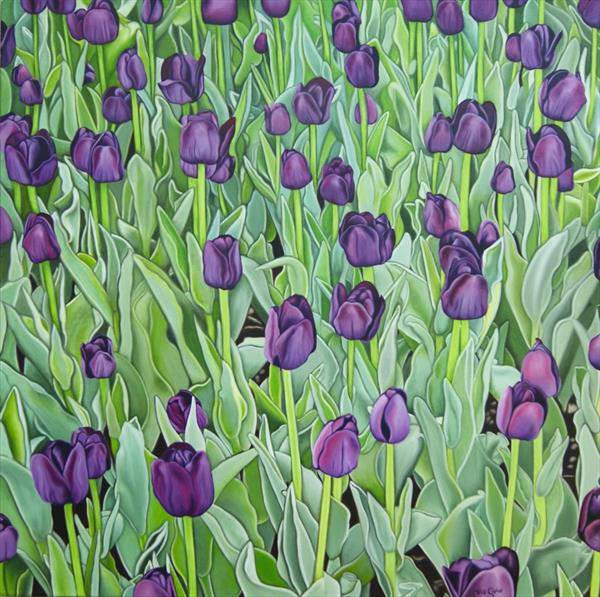Purple Tulips by Steven Shaw