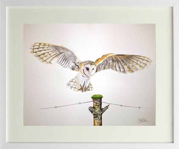 Barn Owl watercolour painting with frame by Matt Dale